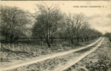 Hammonton History Project: A Fruit Orchard Postcard, [n.d.]